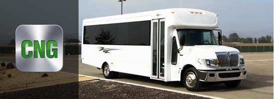 CNG bus for sale
